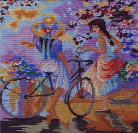 Su dviraciais