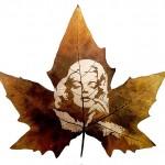 leaf4_1587982i