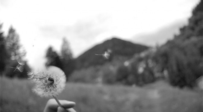 Ką reiškia sapnuoti mirtį?